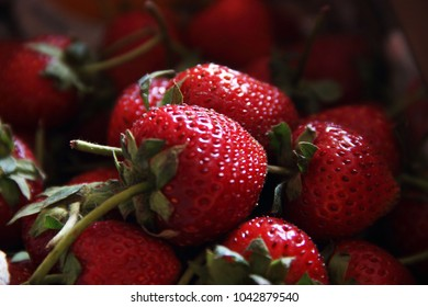 background from freshly harvested strawberries. Fresh organic berries macro. Fruit background