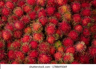 Background of fruits organic rambutan from Thai grocery market. Red rambutan has sweet taste can eat for dessert.