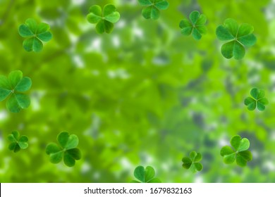 background with green clover leaves