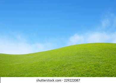 background of green field with blue sky