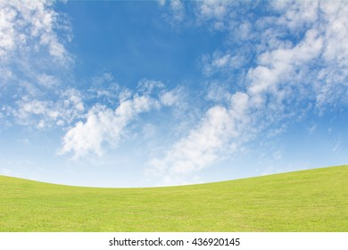 Background green grass and blue sky