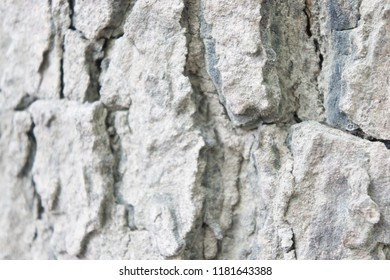 Background of grey wooden