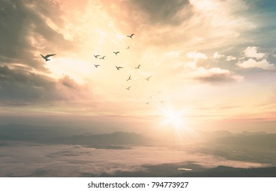 Background of heaven concept: Birds flying with mountain and sky sunrise. Nok Ann cliff, Phu Kradueng National Park, Loei, Thailand, Asia