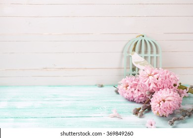 Background  with hyacinths,  willow flowers on turquoise painted wooden planks against white wall. Selective focus and empty place  for your text.