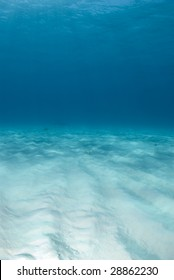 Background image of the bright white rippled sand on the ocean floor at Tiger Beach in the Bahamas