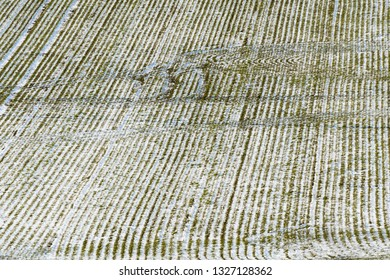 Background image of a cornfield from high perspective in winter season