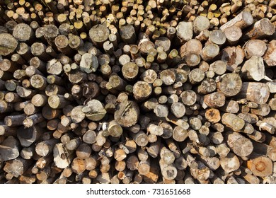 background image of a pile of cut logs in a yorkshire wood yard