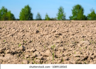 Background with the image of a plowed land
