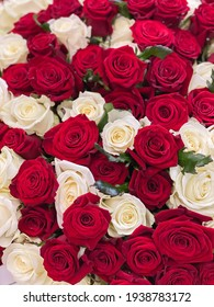 Background image of red roses and white roses. A large bouquet of flowers for a romantic holiday gift. 101 roses