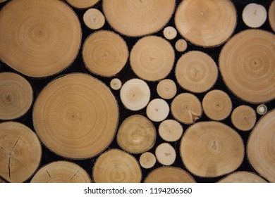 Background image of saw cuts. The use of wood in the interior of ecological design