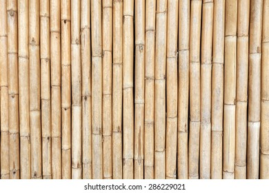 Background image strip bamboo