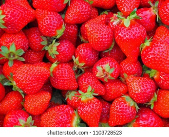 The background image of vivid strawberry