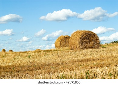 Background from a landscape of field and the sky