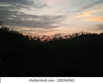 BACKGROUND OF LANDSCAPE FOREST MORNING, FRESH WALPAPER