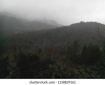 Background landscapes of the beautiful rainy and foggy day in the mountain of south France