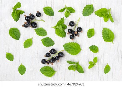 background: the leaves of mint and black currant on white wooden background, top view.