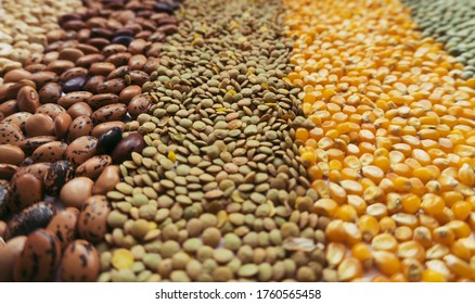 Background made with dry grains and seeds with a different perspective, among them chickpeas, beans, lentils, pop corn and peas, representing food sovereignty and the importance of food in covid times