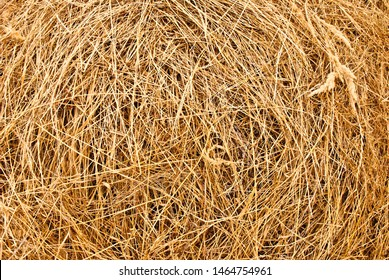 background made of dry hay