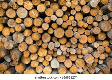 background made of lot of wooden logs