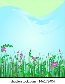 Background nature   grass
