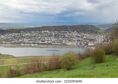 background panoramic rudesheim rhein Germany wine field