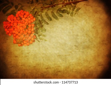 background with patina texture - old wall and oleander