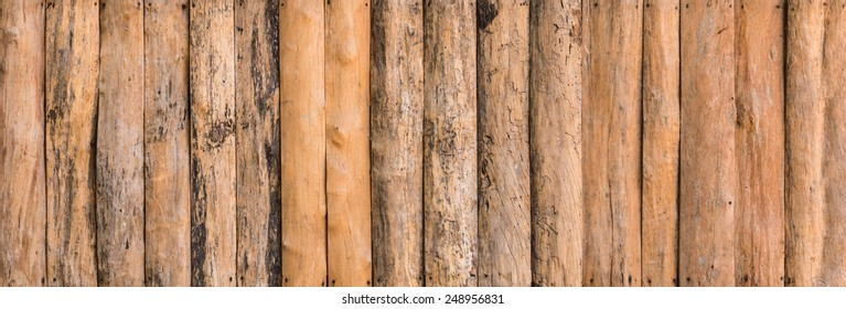 background pattern nature detail of wood texture decorative furniture surface