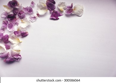 Background with Petals of Flowers and with a free place for your text. It can be used as a background for postcard or invitation cards.