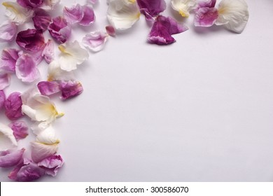 Background with Petals of Flowers and with a free place for your text. It can be used for postcard or invitation cards.