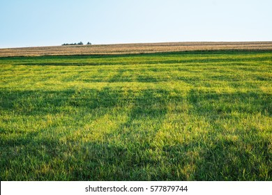 Background photography of bright lush grass field and blue sunny sky. Outdoor countryside meadow nature. Rural pasture landscape with plain green grass. Farm landscape background with green grass lawn