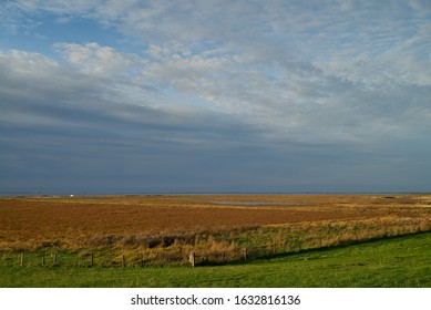 background picture of salt marshes at the north sea coast in atumn under vivid grey sky