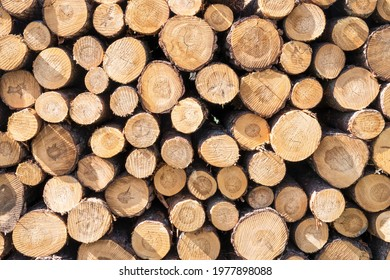 Background with a pile of stacked wood