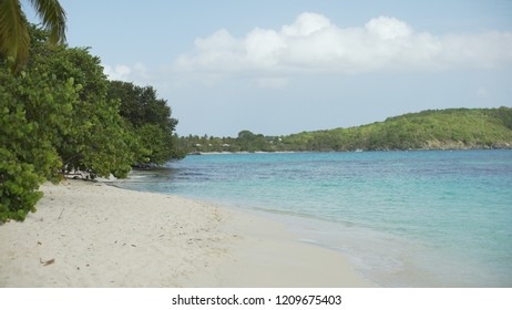 Background Plate of Blue Caribbean water near tropical trees for green screen