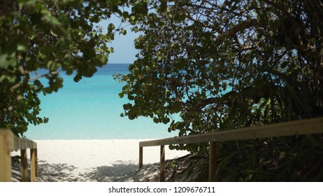 Background Plate of Pathway down to a beautiful Caribbean beach for green screen