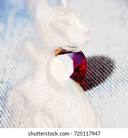 The background from the portrait of the cat of the Canadian Sphinx breed and the diamond cut colored crystal of the zirconium. The complex mixed image for the decoration of a modern smart home.