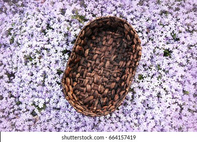 Background Of Purple Flower Garden And Woven Basket Prop