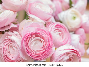The background of ranunculus colors is gently pink. A riotous peony-shaped rose bouquet