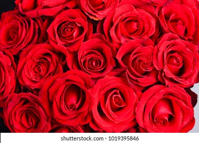 background of red bouquet of rose
