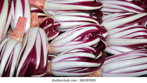 background of red chicory called Radicchio Rosso di Treviso in Italy for sale in the greengrocer