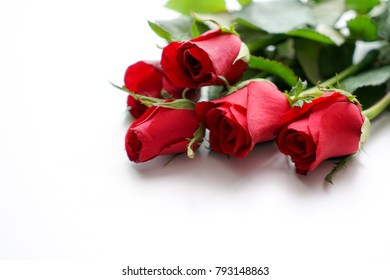 Background red rose for valentine day
