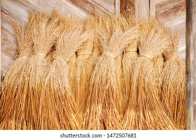 Background of rice straw in gold color in front of a rice house in Vietnam.