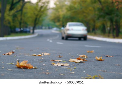 Background with road, autumn leaves and car.