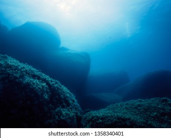 background of a rocky sea bottom, the golden sunlight enters the water of a turquoise blue sea gently illuminating the dark rocks covered in tiny algae and some small fish swim in the background