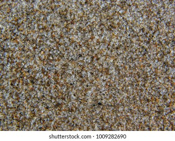 Background with sea sand