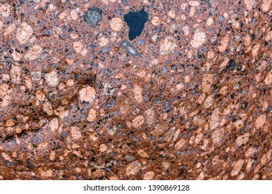 the background of sea stone, the texture of the stone