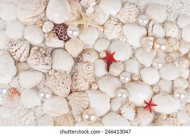background from seashells with starfish on a large white sand