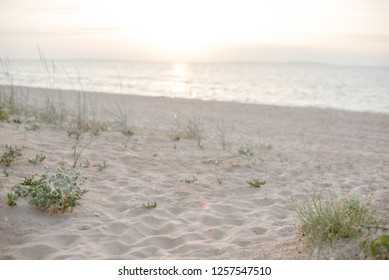 Background of a secluded sandy beach in soft pastel shades in the rays of the setting sun.