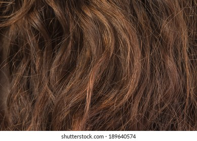 Damaged Hair Images, Stock Photos & Vectors | Shutterstock