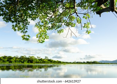 Background , Sky swamp mountain cloud water reflection  , tree