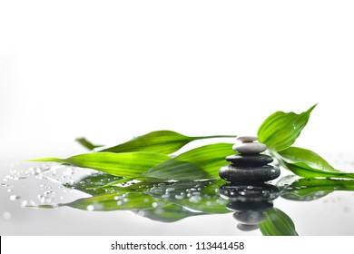 fondo de un spa con piedras y una pizca de bambú verde